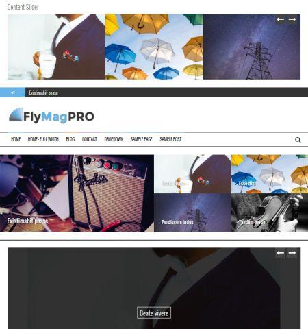 flymag pro