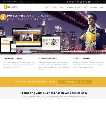 pro business