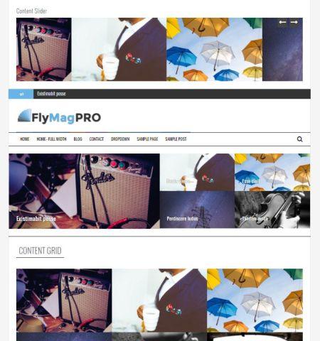 News WordPress themes #1: Flymag Pro