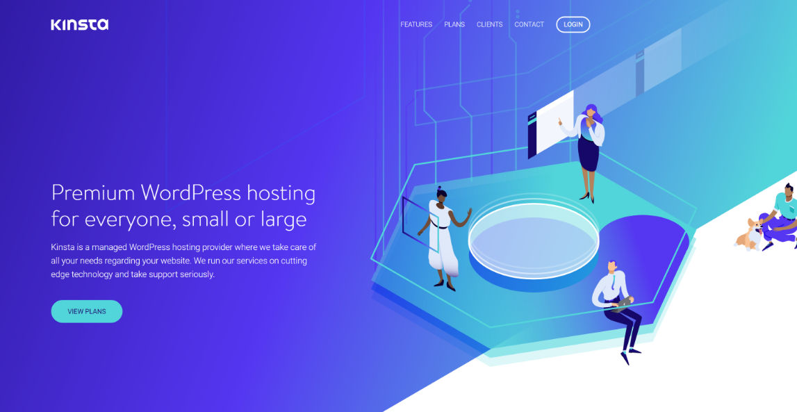 kinsta hosting website