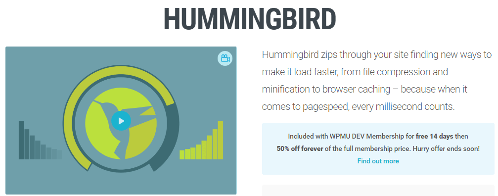 The Hummingbird homepage.