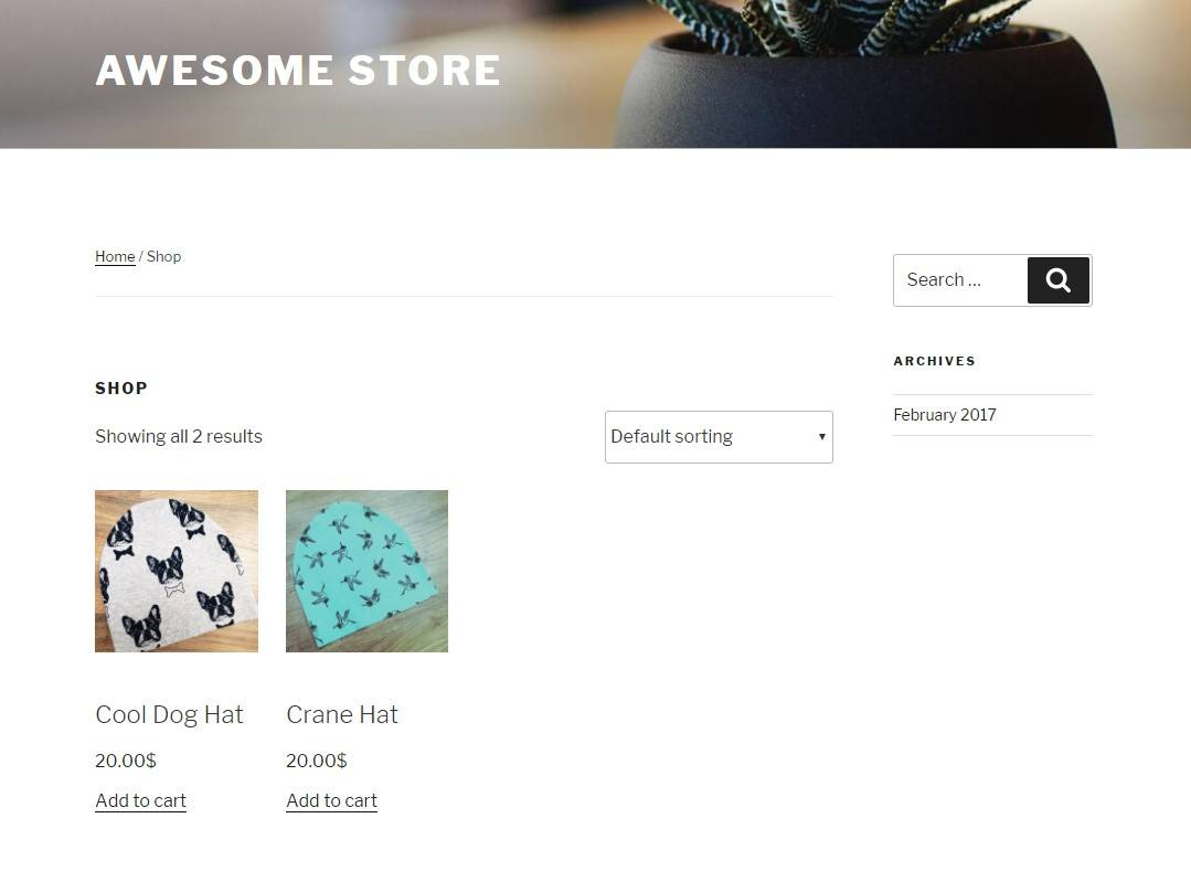 WooCommerce store example