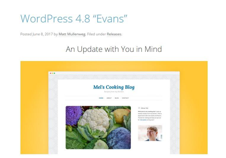 June 2017 WordPress News: WordPress 4.8
