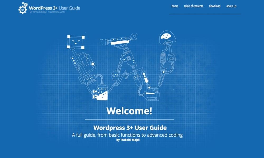 CodeinWP guide