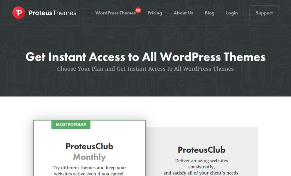 ProteusThemes / ProteusClub monthly