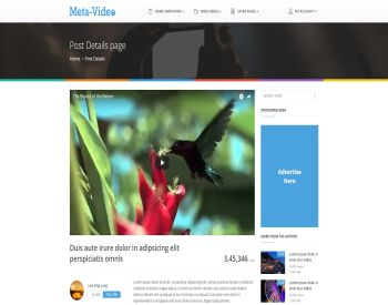 Meta Video view